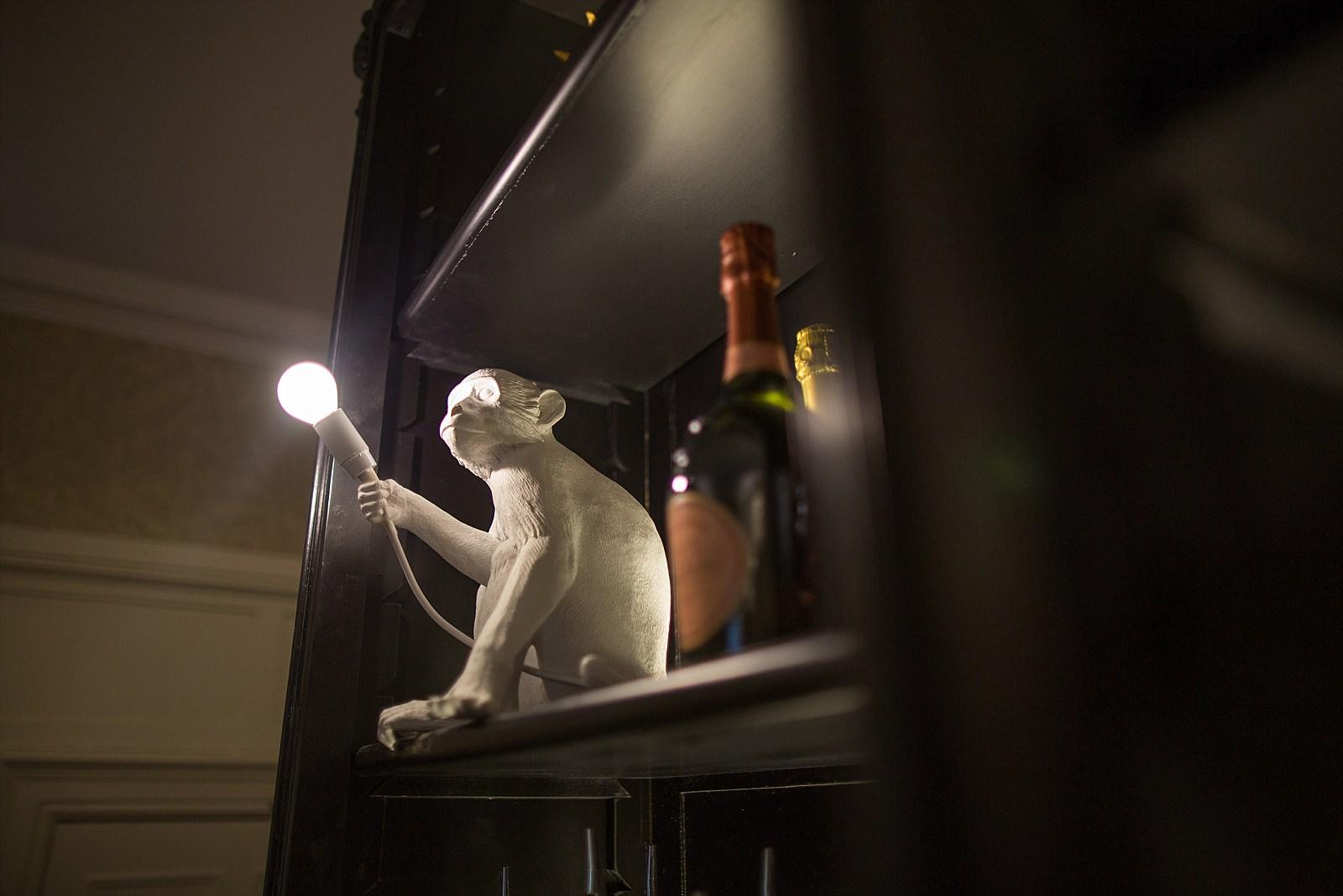 monkey lightsade holding a lightbulb