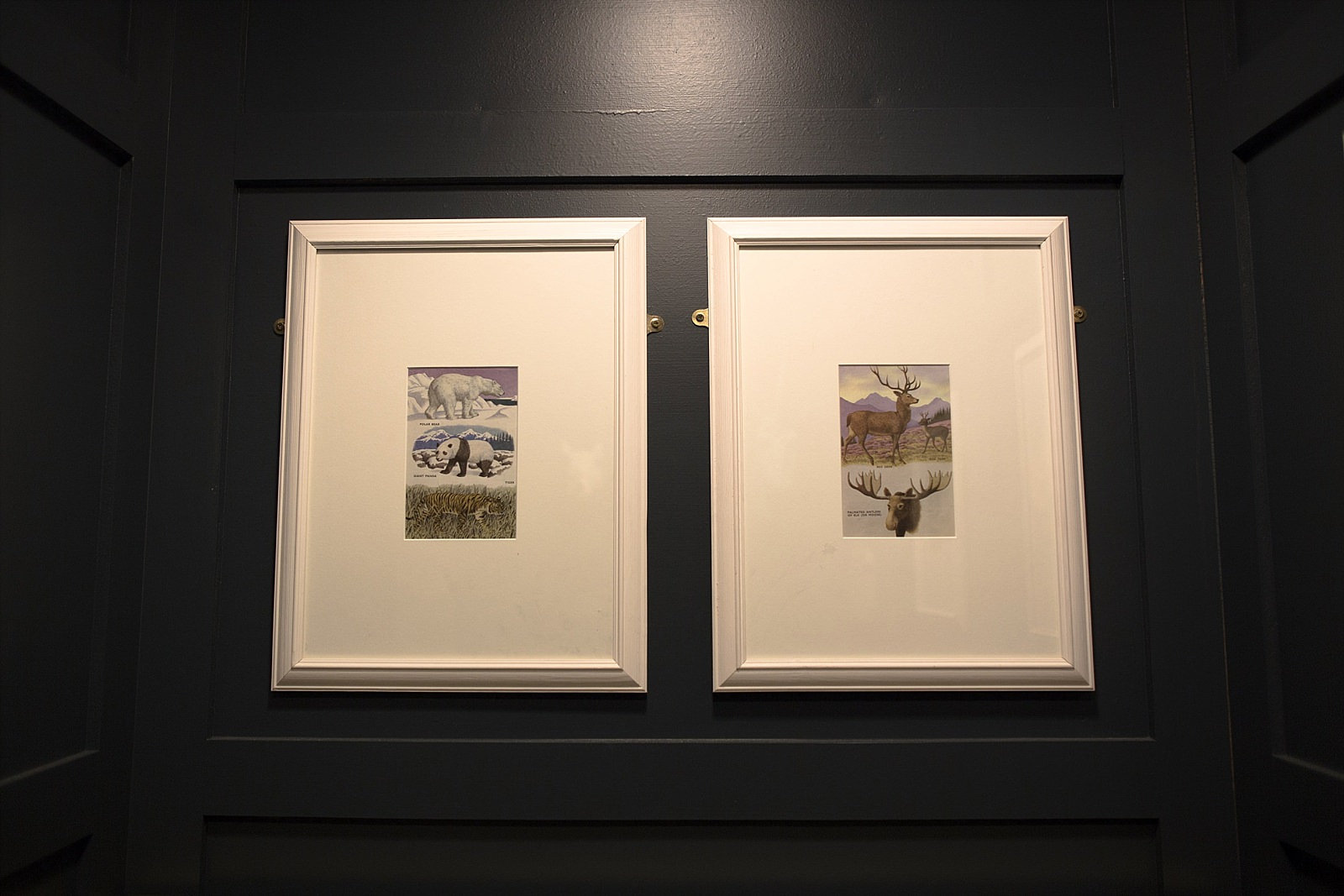 book pages being framed on a wall