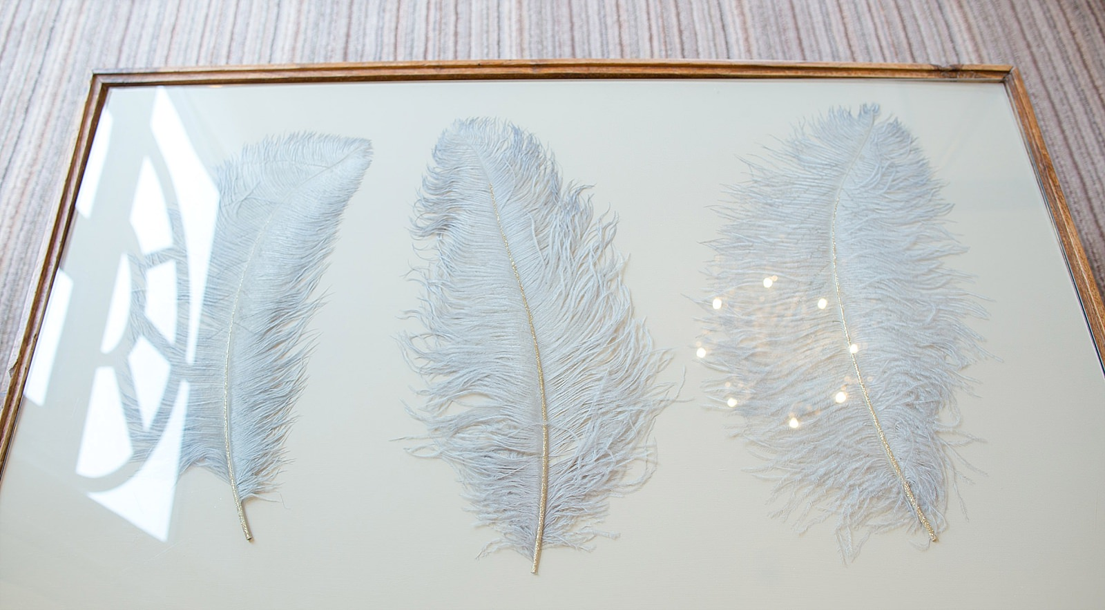 ostritch feathers under a glass table