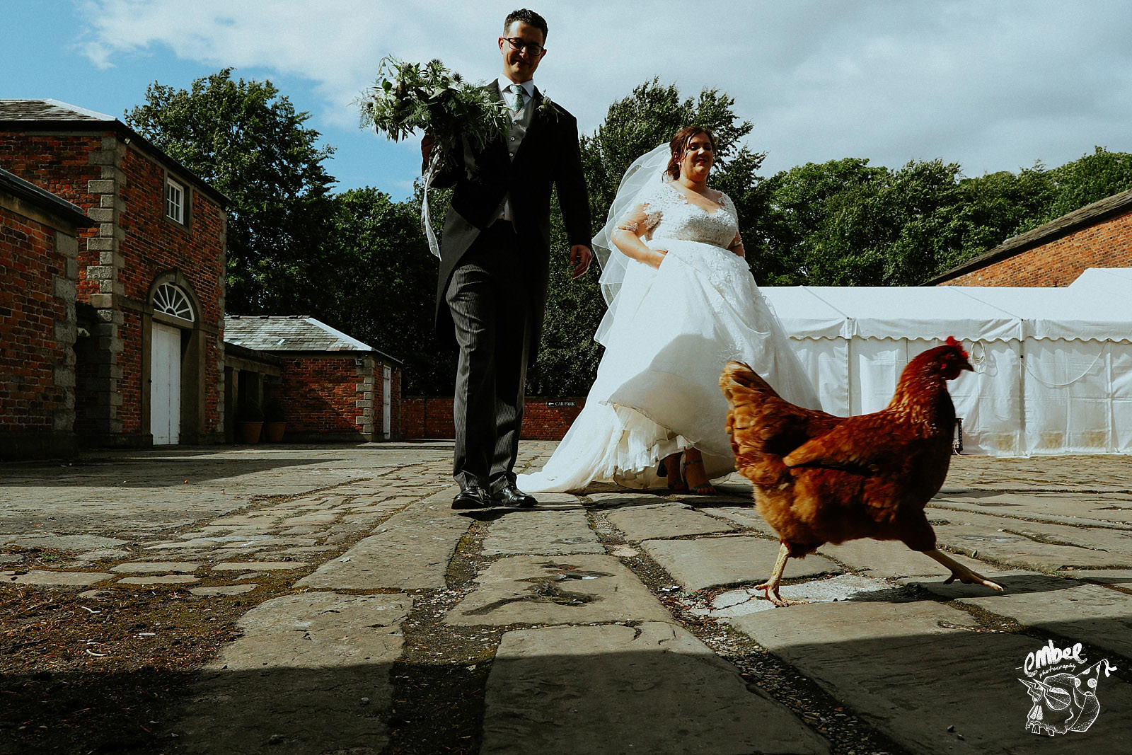 chicken runs infront of bride and groom as they walk past