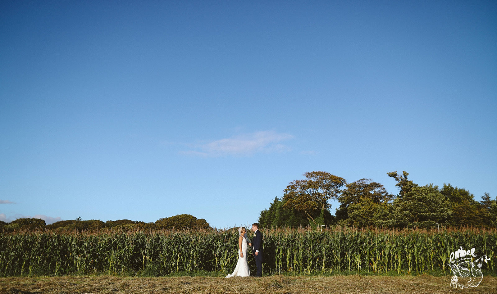 bride and groom in the middle of a corn field