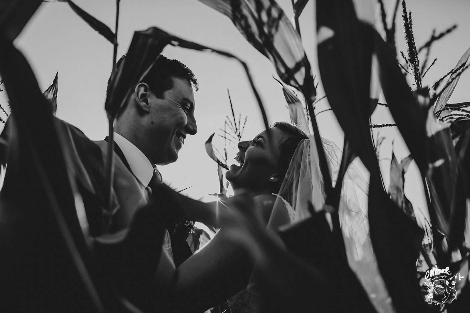 bride laughing with her groom in the middle of a corn field