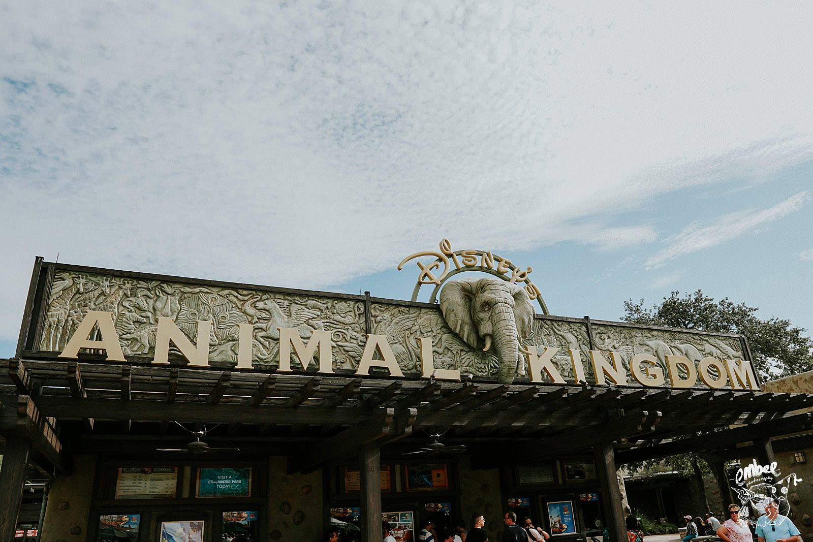 animal kingdom sign in disney world