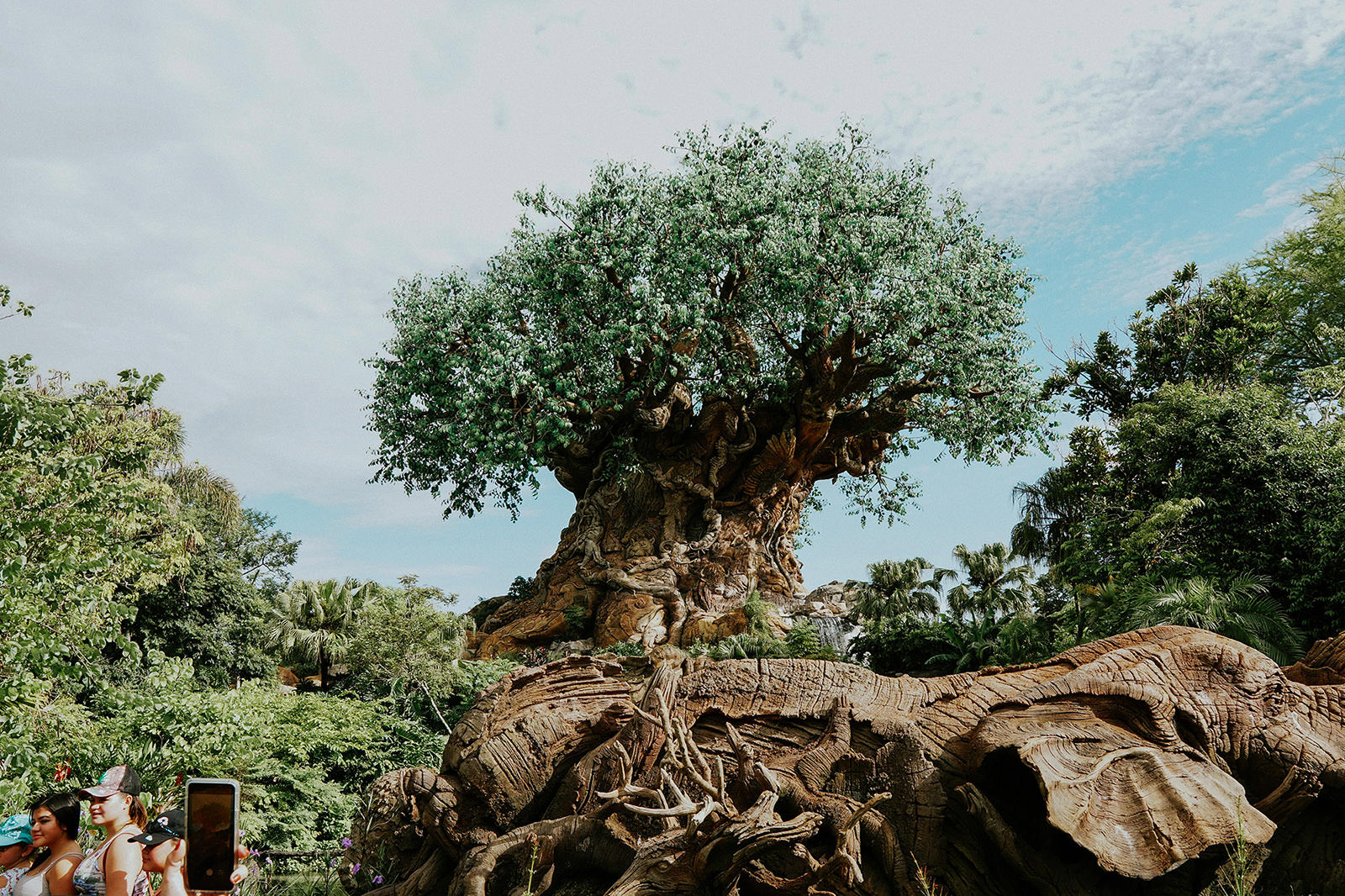 tree of life Disney world animal kingdom