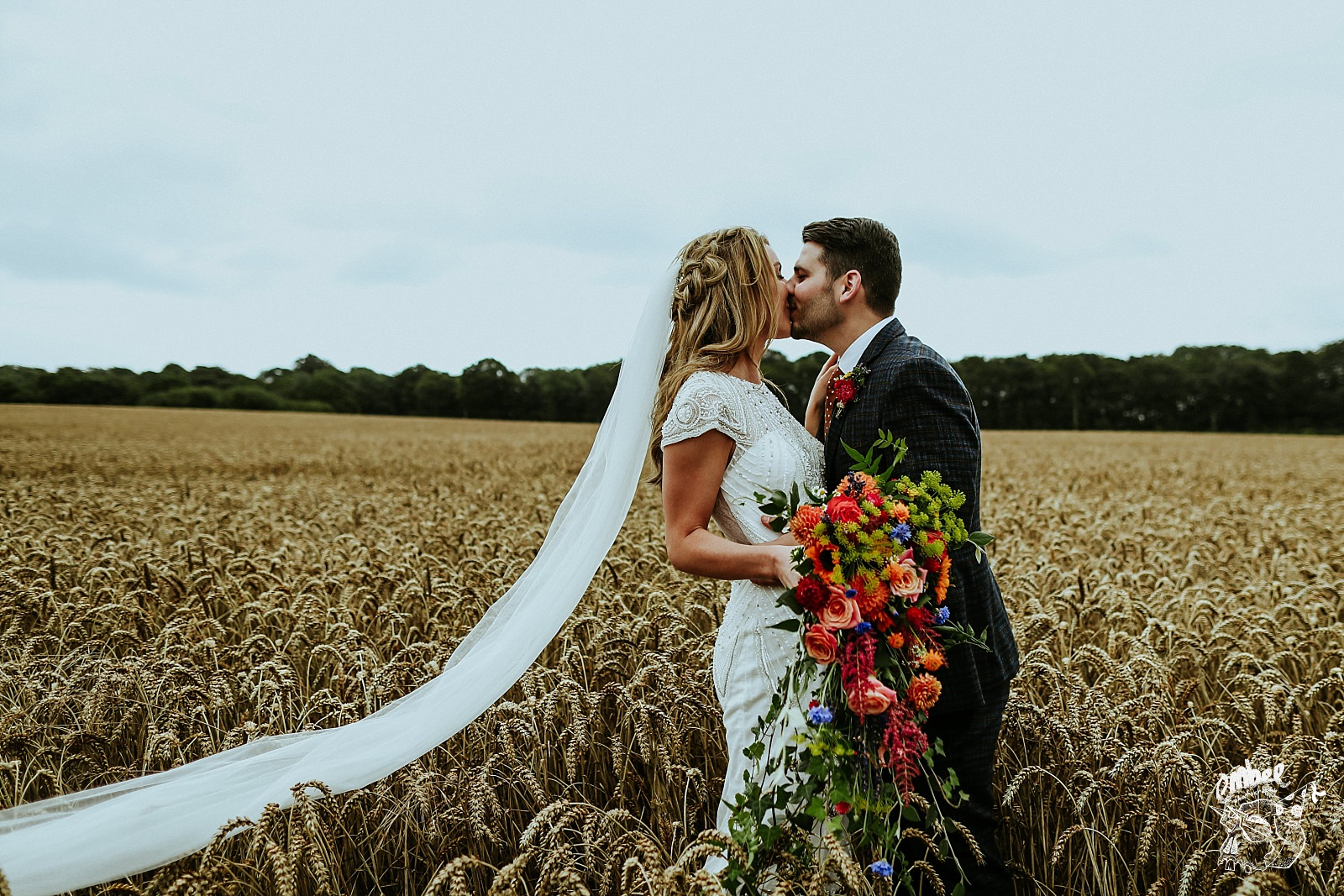 kissing bride and groom in a field of wheat