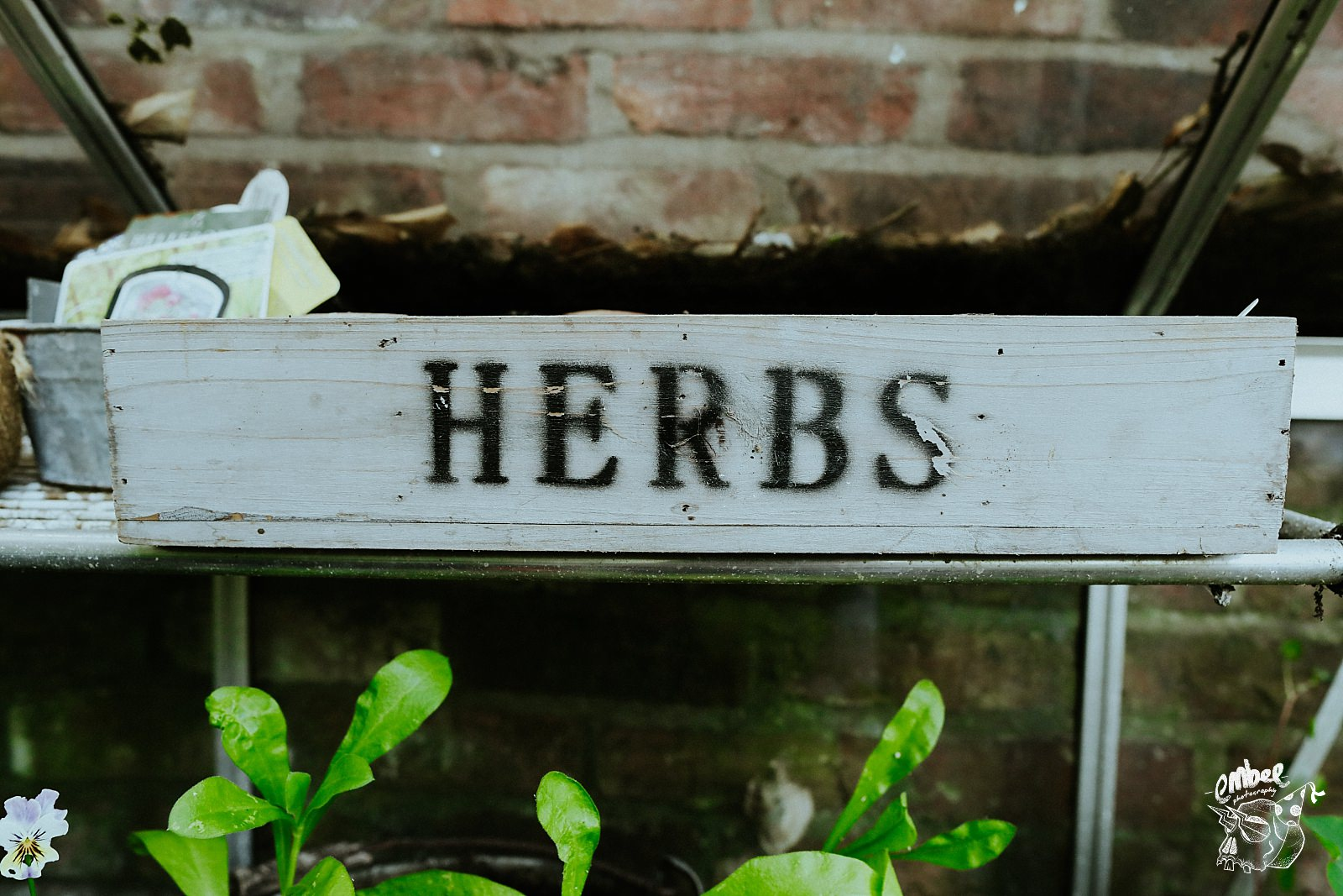 herbs writing on box